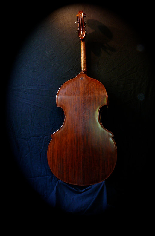 image of Walnut back busetto bass ©2017 by Seth Kimmel  Bass maker/luthier of American made, real wood, hand-carved, double bass violins; Eugene, Oregon, USA