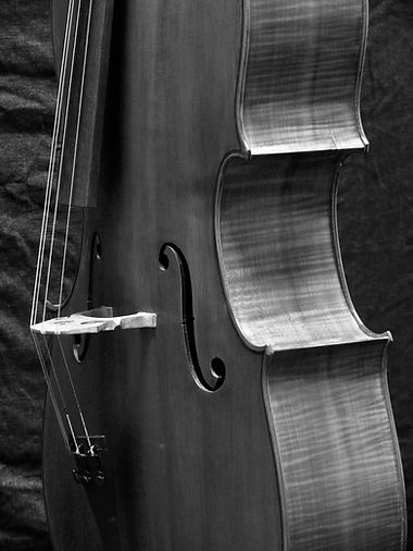 'cello #5 ©2020 by Seth Kimmel; Made in America