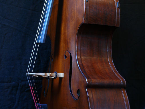 image of Busetto Bass with exterior linings©2017 by Seth Kimmel  Bass maker/luthier of American made, real wood, hand-carved, double bass violins; Eugene, Oregon, USA