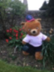 TeddyGarden2.jpg