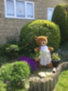 TeddyGarden.jpg
