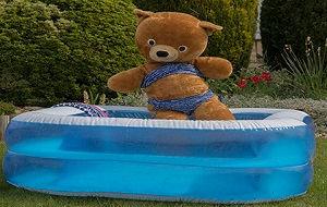 TeddyBikini.jpg