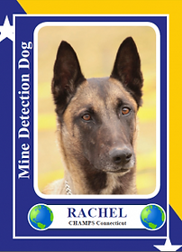 Rachel-trading-card_front-217x300.png