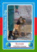 browncard-217x300.jpg