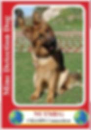Nutmegcard-211x300.jpg