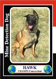 hawkcard-213x300.jpg