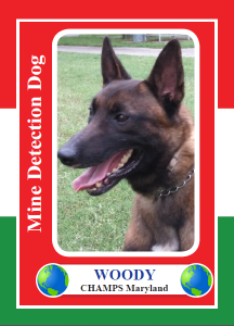 Woody-trading-card_front-216x300.png