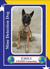 Emily-1-002_Page_1.jpg