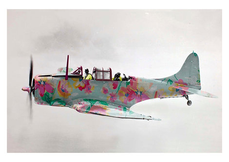 Spitfire (print)