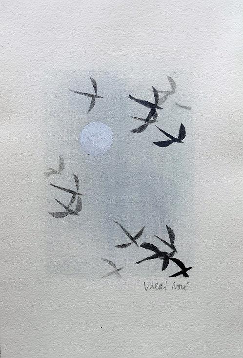 Los Aves