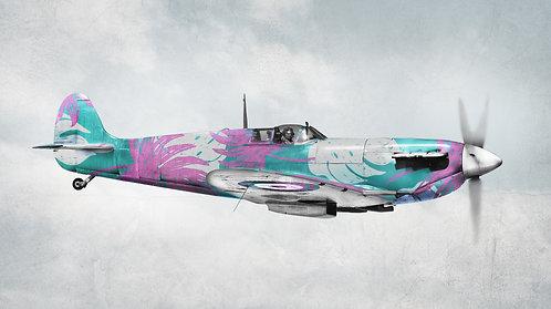 Air Commander