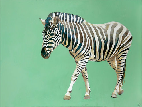 Walking Zebra