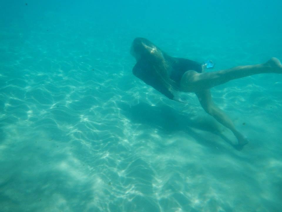 Sea Life Pic: Anna Macaulay