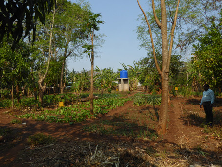 Malawi Supporter Visit (Pt 2)