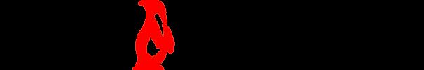 DFR logo_red&black.png