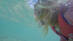 Ava's first snorkel on the GBR