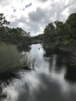 Creek and waterhole at Dili Village