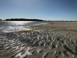 Wathumba Creek at low tide