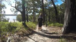 So many beautiful walking tracks
