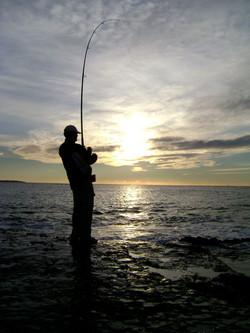 Sunrise fish