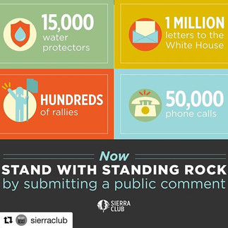 Standing Rock Rapid Response