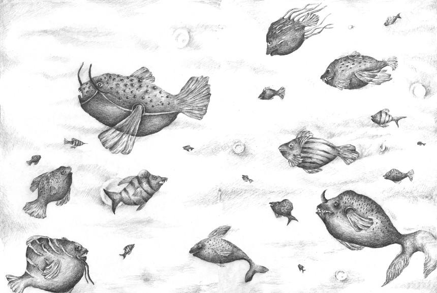 MIRACEL FISH