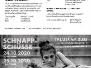 """Erfolgreiche """"SCHNAPPSCHÜSSE"""" vom 24. + 25.10.2020 im Theater am Gleis"""