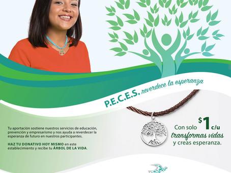"P.E.C.E.S. lanza su campaña ""Reverdece la esperanza"" Recaudan fondos a través del ""charm"" de árbol d"