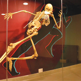Manipal Museum of Anatomy & Pathology