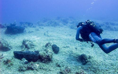 Octopus_Reef_03.jpg