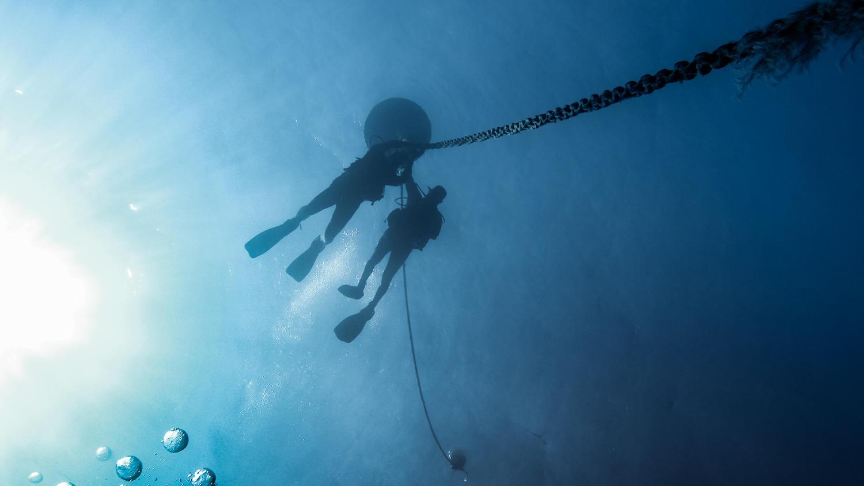 Octopus_Reef_02.jpg
