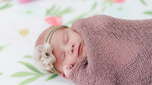 Emerson's Newborn Session