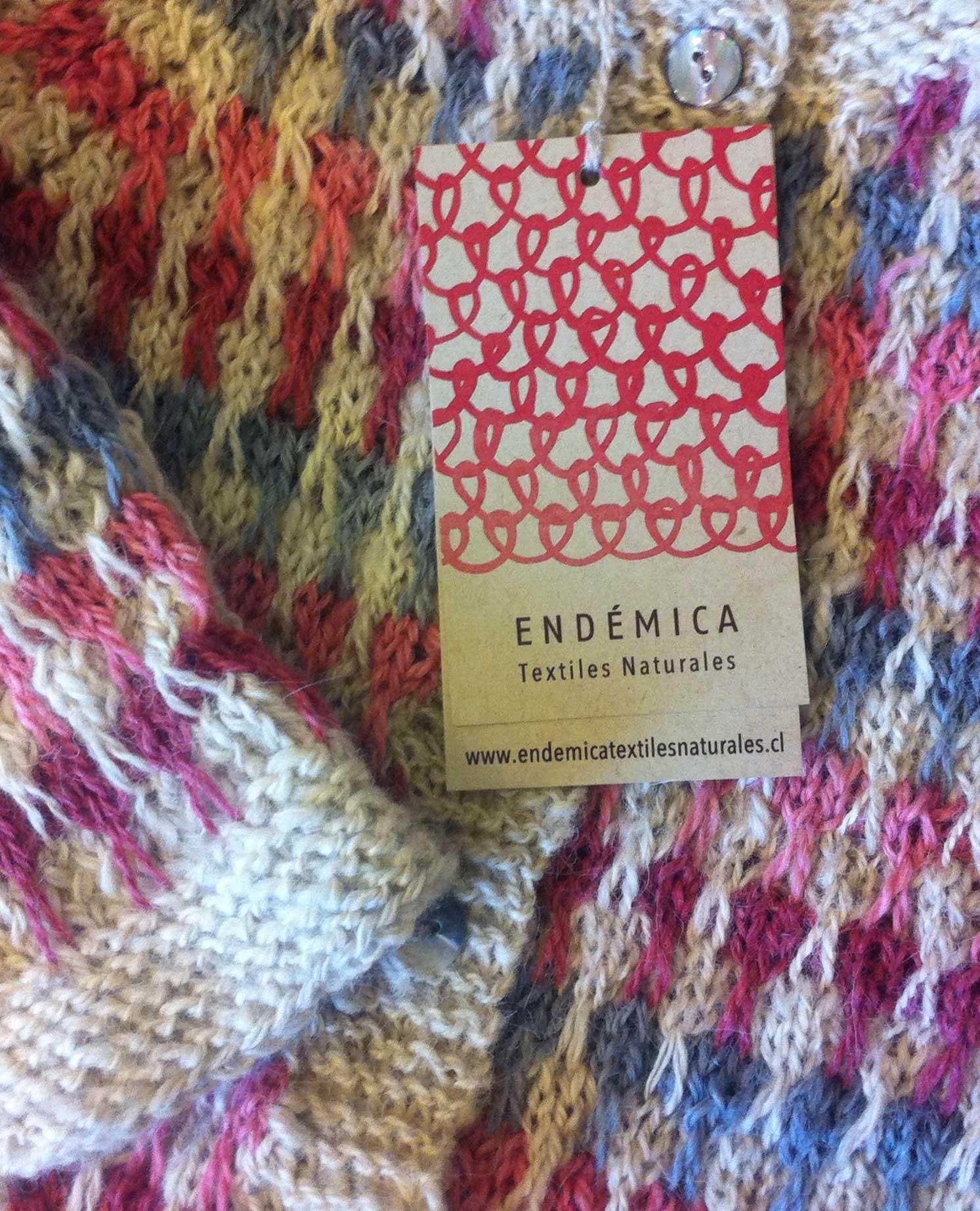 slide-endemica-5