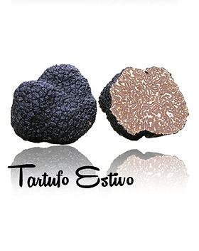 Black Summer Truffle.jpg