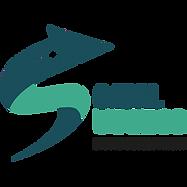 Social Success Logo NEW.png