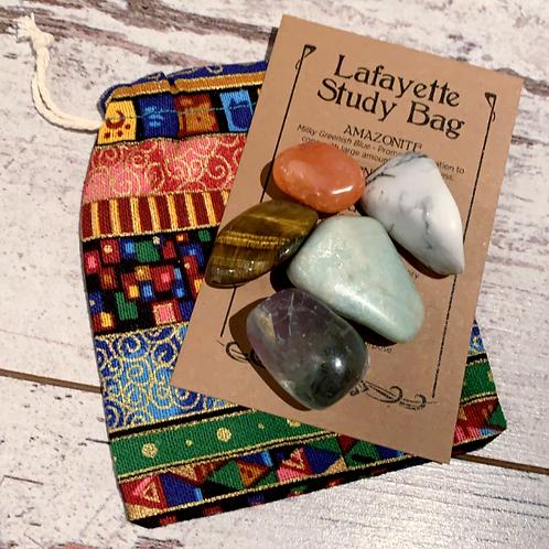 Lafayette Study Crystal Bag