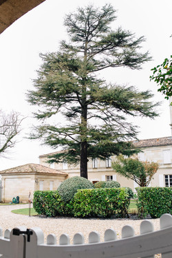 Visite_Grand_Puy_Lacoste_021