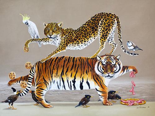 Animal Print Yoga Apparel