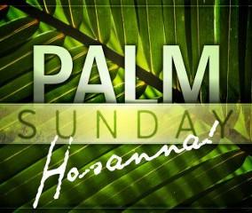Becoming a Follower of Jesus - Hosanna
