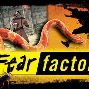 The Fear Factor El Factor de Miedo