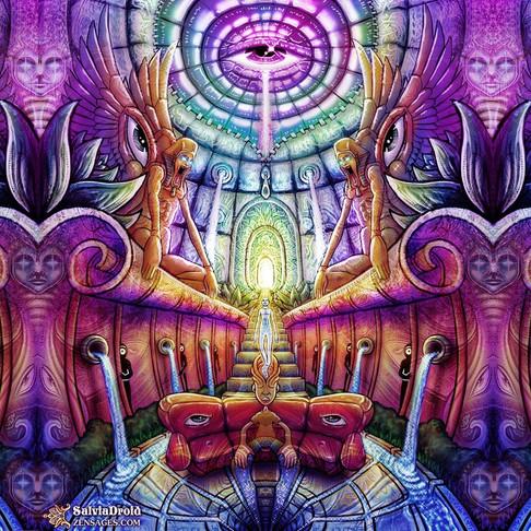 Magic Mushrooms to Lucid Dreams