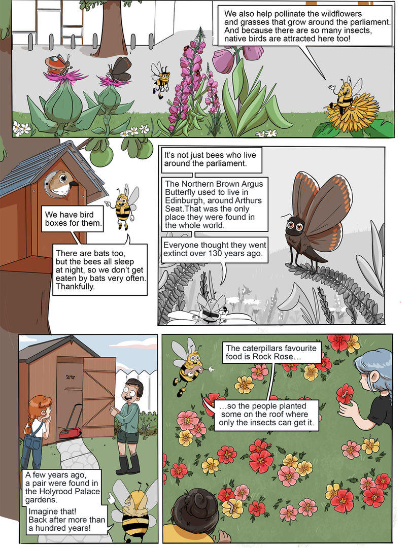 bees view page 2 english square boxes.pn