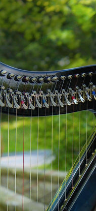 Electric harp belonging to Katie Pachnos
