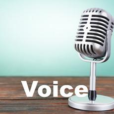 Private voice lessons