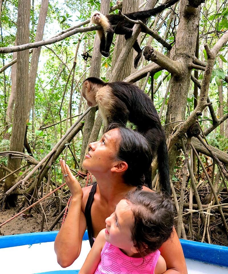 Jaco-Monkey-Tour-.jpg