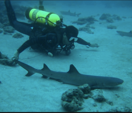 Scuba Diving Costa Rica 6.png