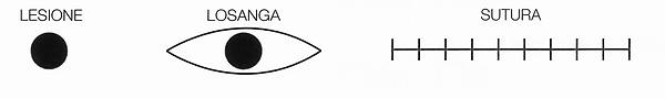 sutura.png