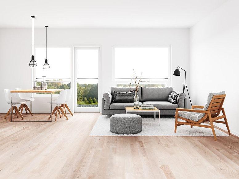 minimalist-living-room-with-dining-room.