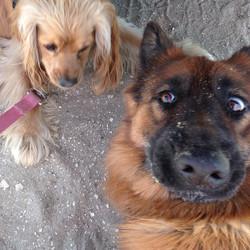 Selfie with Isla & Friend