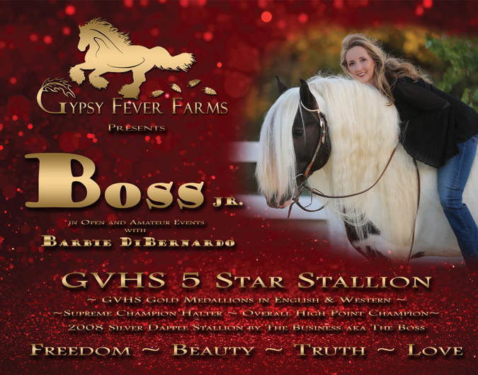 Horse Show Stall Banner